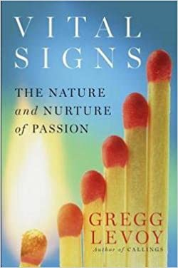 Live Vibrantly Vital Signs Book